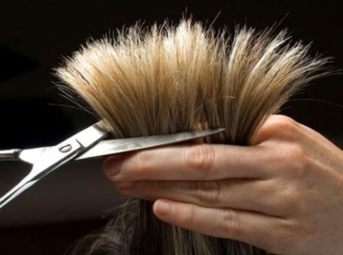 Эффективные способы лечения тонких и секущихся волос